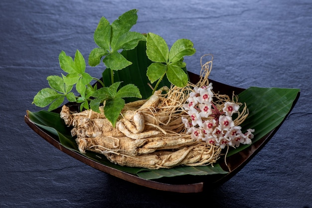 Ginseng and eleutherococcus trifoliatus green leaf on black ceramic background.