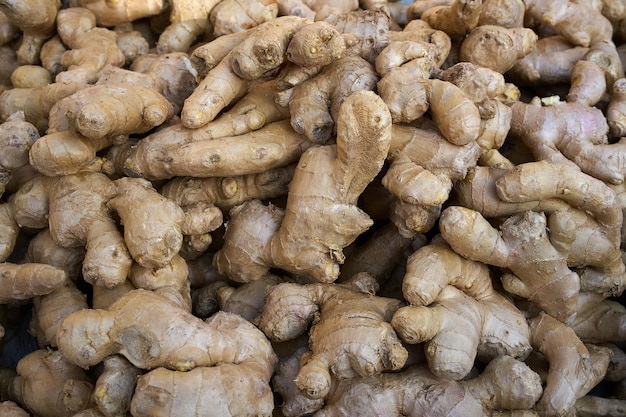 Ginseng ginger roots background pattern