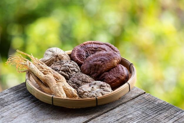 인삼, 표고 버섯 및 영지 또는 lingzhi 버섯 bokeh 자연 배경.