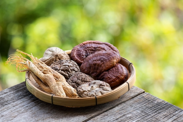 Ginseng, shiitake mushroom and reishi or lingzhi mushroom on bokeh nature background.