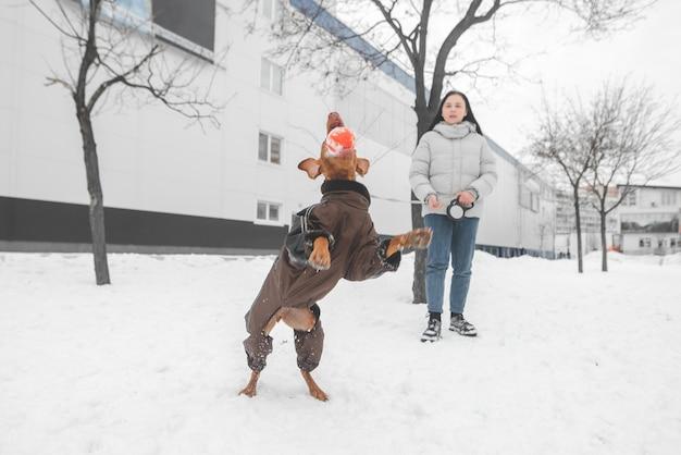 Девушка и одетая собака на поводке играют зимой в снегу