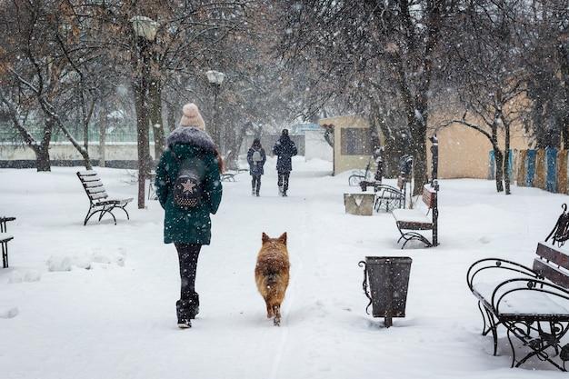 降雪時の冬の都市公園の少女と犬_