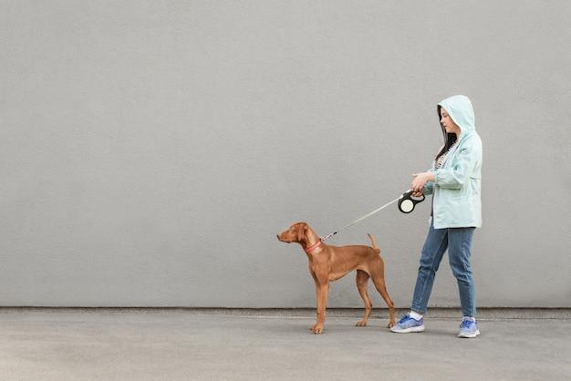 ひもにつないだ女の子と犬が歩いています。