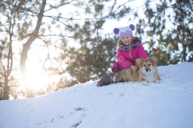 屋外で女の子と小さなかわいいコーギーふわふわの子犬。冬