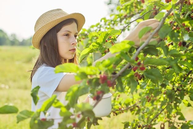 집 정원에 있는 머그잔에 있는 뽕나무의 나무 수확에서 찢는 여자 아이는 공간을 복사합니다. 어린 시절, 건강 식품, 자연, 여름, 휴가 개념