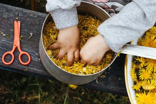 Девушка собирает пыльцу данически