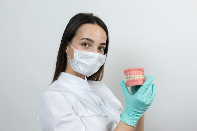 Girl doctor dentist in a white coat holds a mock of teeth.