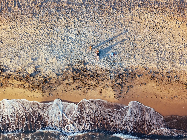 Girl and dog at the beach at sunset, aerial views