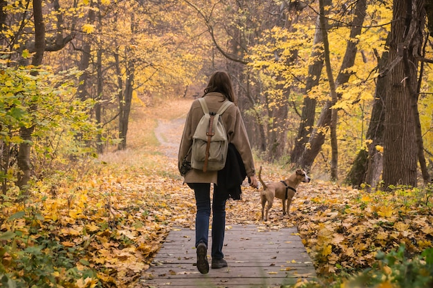 Girl and dog on walk in beautiful autumn nature park