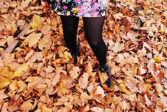 秋の葉を楽しむ少女