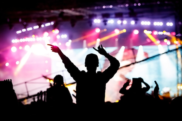 Girl enjoying a music festival or concert. black silhouette of the crowd.