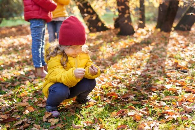 Подружки гуляют по осеннему лесу
