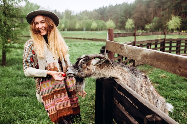 Girl in a gray hat and sweater with an ethnic pattern. a young woman feeds a goat with vegetables near a wooden fence in a farm. goat close up. zoo life. farming