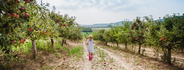 Girl in hat and rain boots walks and eats sweet apple in apple orchard