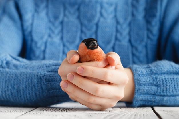 女の子は手でウソ鳥を保持します。