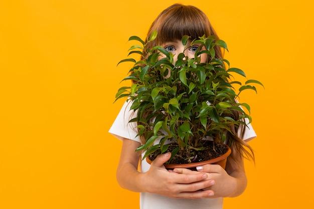 Девушка держит цветок в горшке в руках на желтом