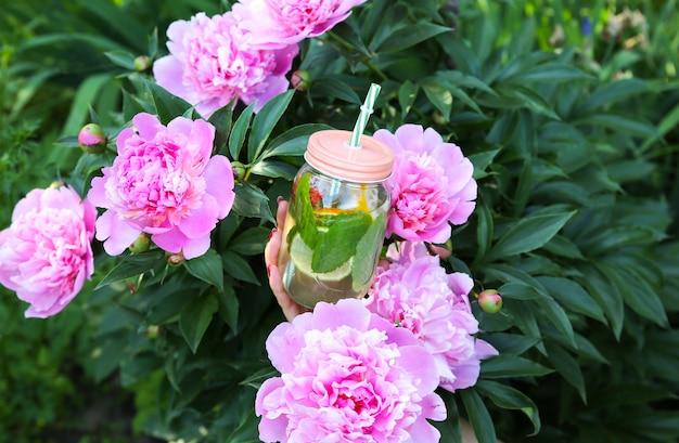 ストローで瓶に新鮮なレモネードを保持している女の子。牡丹と一緒に流行に敏感な夏の飲み物。自然の中で環境にやさしい。ガラスにミントが入ったレモン、オレンジ、ベリー。美しい春の花。