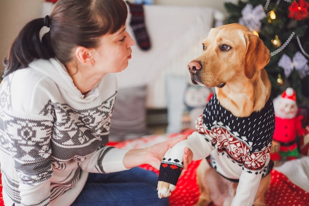 Girl holding a paw of pointer dog in christmas clothes with a christmas tree and decorations. christmas pets concept.