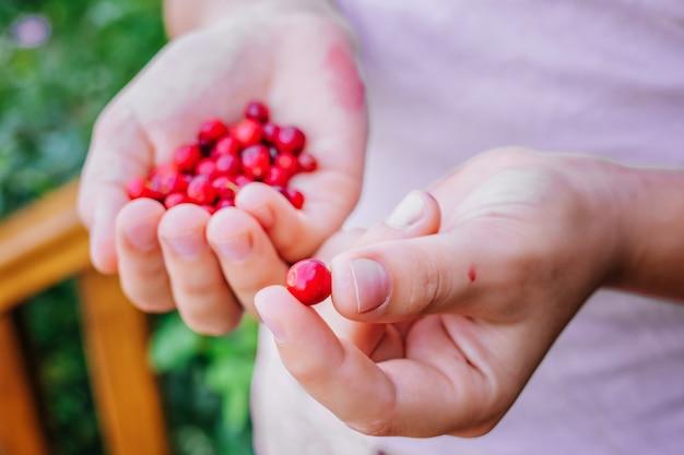 彼女の手で赤いクランベリーを保持している女の子。