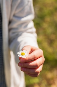 Girl holding white daisy flower close up