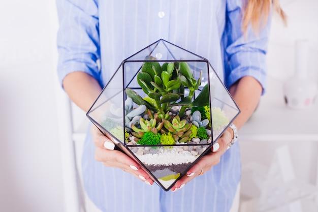 Девушка держит стеклянную форму с растениями и камнями для озеленения интерьера
