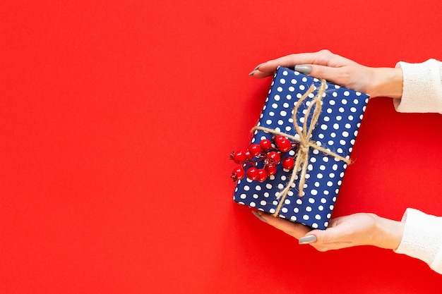 Girl holds blue gift box in polka dots with sprig of hawthorn on a red background, merry christmas and happy new year concept, flat lay, top view