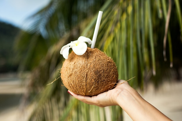 Girl holds a cocktail in a coconut in her hand, against the background of a tropical island.