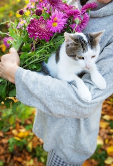 The girl holds a cute cat in her arms and a bouquet of beautiful purple chrysanthemums.