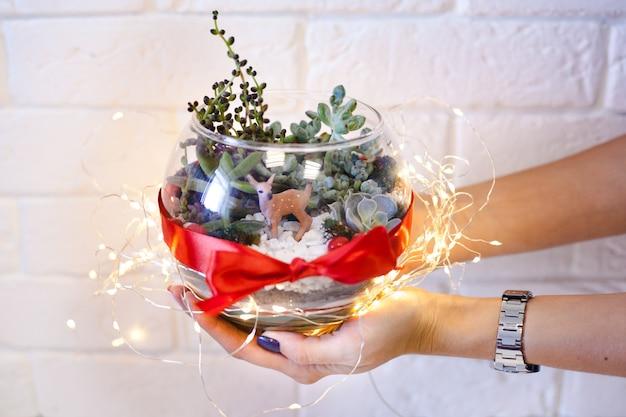 A girl holds a florariumov