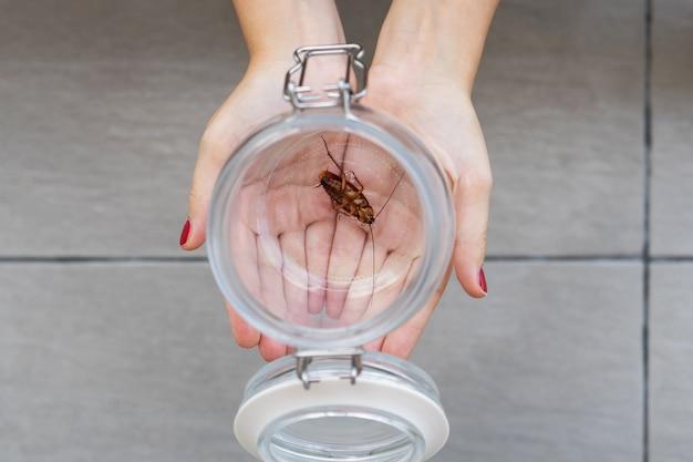 Девушка держит на ладони стеклянную банку с тараканом внутри