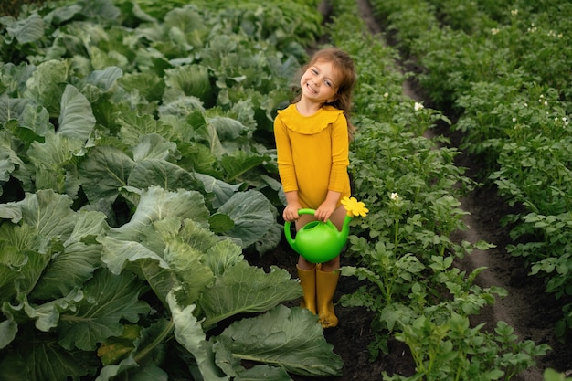 A girl holds a watering can with water to watering the garden with cabbage and potatoes