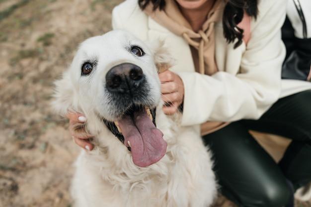 フィールドでゴールデンレトリバーの犬を抱き締める女の子