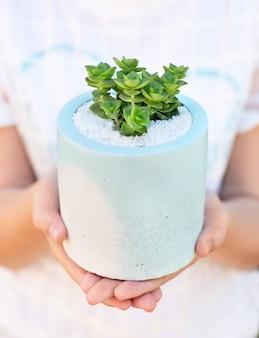 白いtショートの女の子は彼女の手でセラミックの青白の植木鉢に多肉植物を持っています。