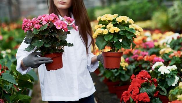温室内で2つの鍋を手に持っている作業服の女の子。