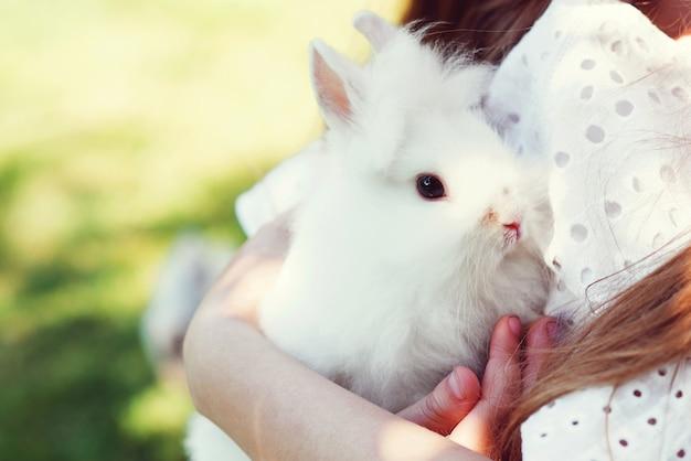 소녀는 귀여운 작은 토끼를 잡고 있습니다. 아이들은 진짜 토끼와 놀고 있습니다. 흰색 애완 동물 토끼와 아이입니다. 정원에서 동물을 가지고 노는 어린 소녀. 부활절 토끼와의 우정.
