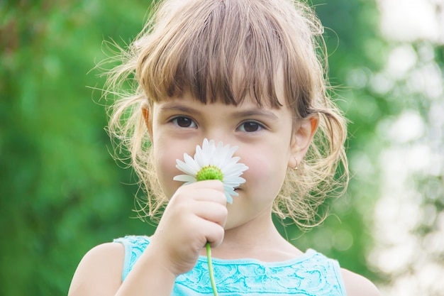 The girl is holding chamomile flowers in her hands.