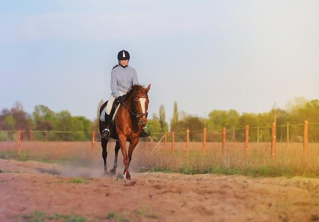 Девушка-жокей верхом на лошади