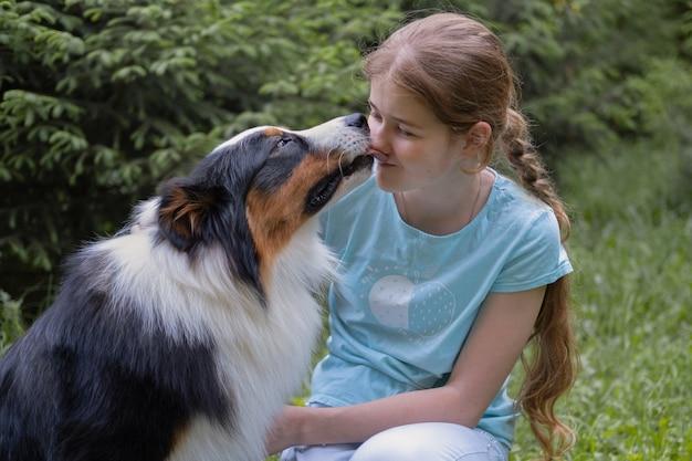 소녀 키스 애완 동물 오스트레일리아 양치기 개. 코를 핥아. 애완 동물 관리 개념입니다. 사랑과 우정