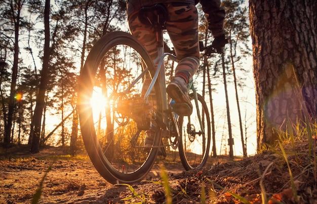 Девушка на велосипеде едет по тропе в осеннем лесу на закате