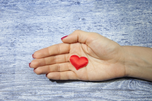 The girl in the palm holds one red heart on a background of jeans color