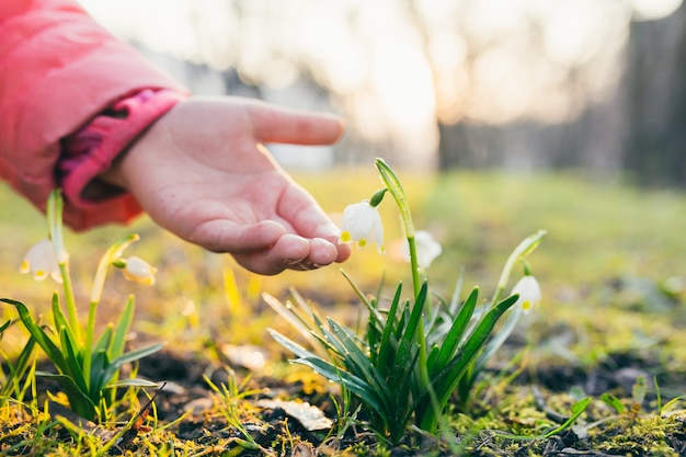 春の花を植える女の子