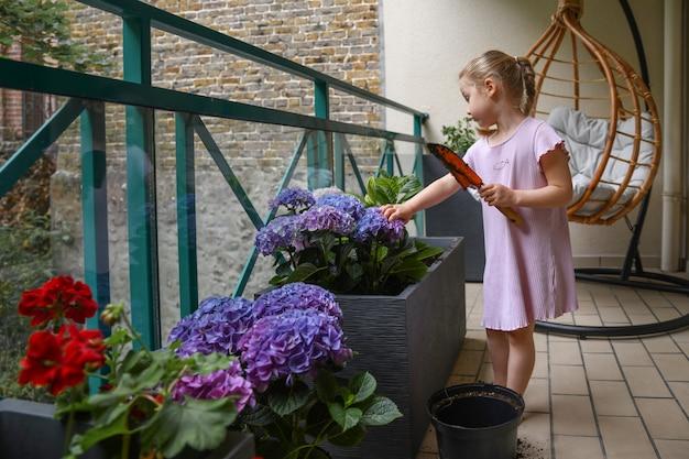 Girl plants purple hydrangea on the balcony