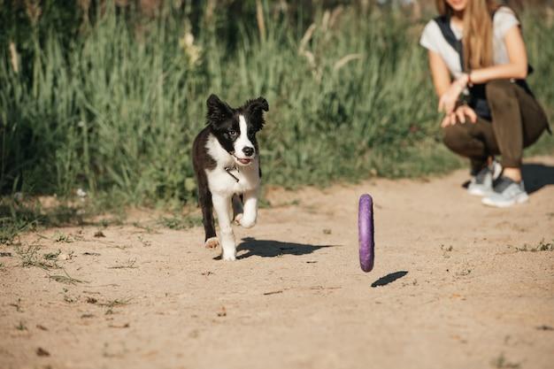 Девушка играет с черно-белым щенком бордер-колли на лесной тропе