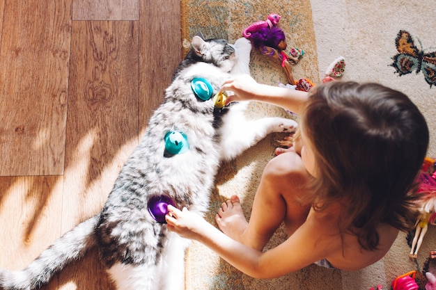 Girl playing with cat, pet and his little mistress