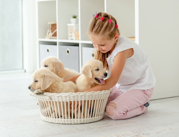 Girl playing with retriever puppies