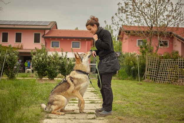 Девушка играет с волчьей собакой в парке
