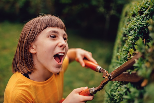 Girl pruning hedge with hand shears