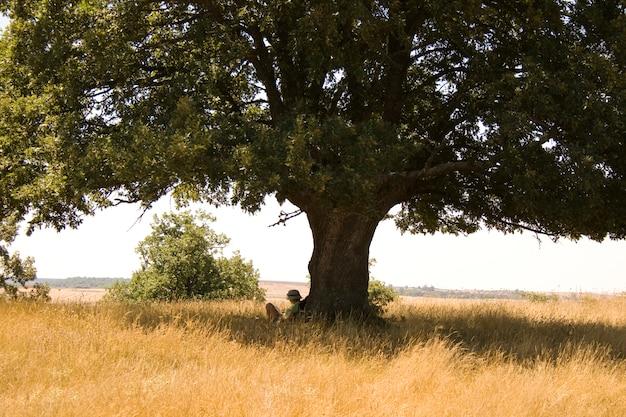 Girl reading under tree
