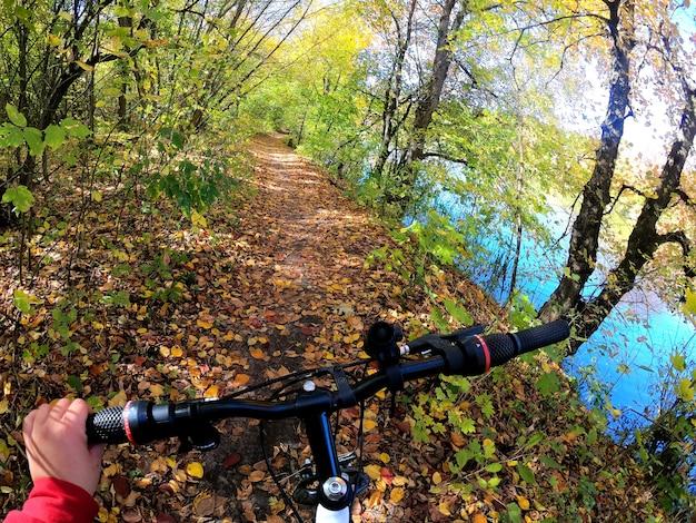 소녀는 숲을 통해 자전거를 탄다. 소녀는 햇빛과 함께 가을 숲의 길을 따라 자전거를 탄다. pov 액션 카메라 go pro. 컨셉 어드벤처 액티브 라이프스타일 스포츠. 1인칭 시점에서 보기