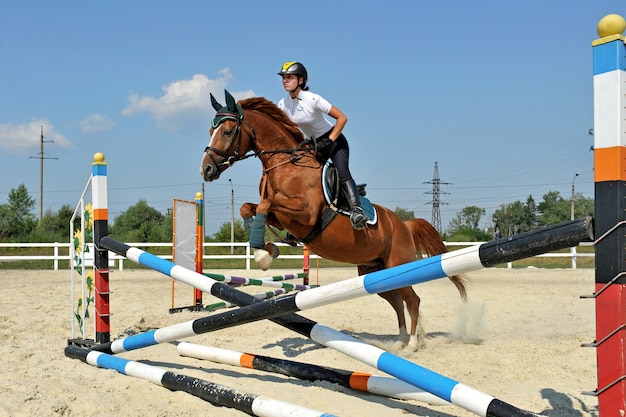 Girl riding a horse on jumping competitions